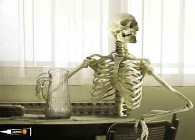 esqueleto def 2