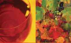 vibrant-rioja