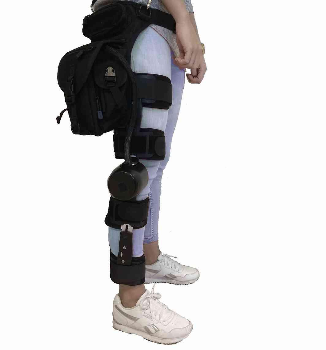 gogoa mobility 2